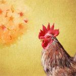 鶏のとさかの料理があるって本当?食事を味わうことができる5店紹介